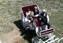 D. Stewart's wedding carriage